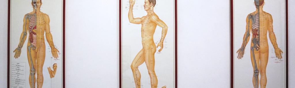 teoria dei meridiani medicina cinese